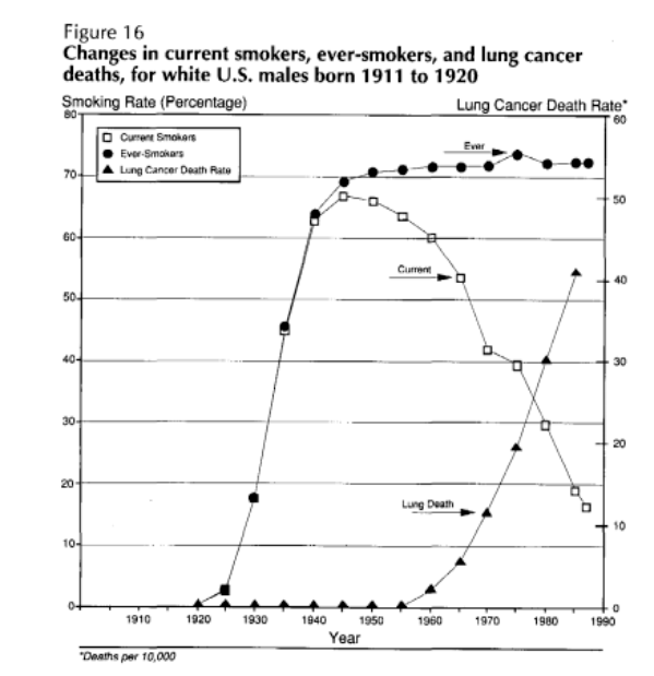 Looking at lung cancer in more detail, this graph shows a delay of about 25 years between large percentage of cohort smoking, and rapid growth of lung cancer.